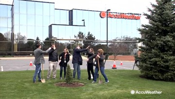 AccuWeather plants a tree in celebration of Arbor Day