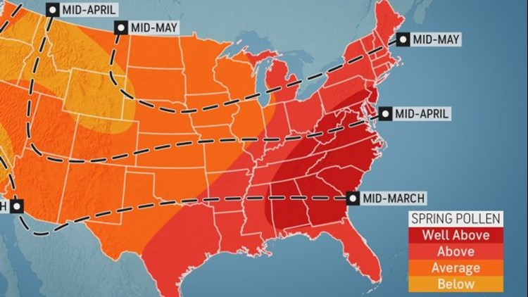 Brutal allergy season ahead for many Americans, experts say