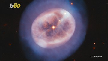 NASA Astronomers Discover 'Jellyfish-like' Star in Outer Space