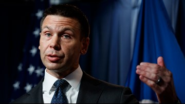 DHS announces plan to combat domestic terrorism