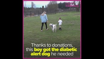 Community comes together to get boy a diabetic alert dog