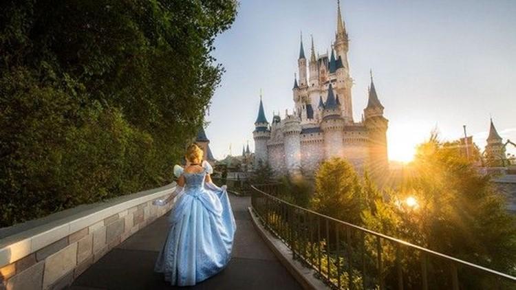 Walt Disney World announces 'nature-inspired' resort for 2022