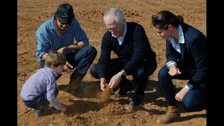 Australia relaxes protections on kangaroos during historic droug