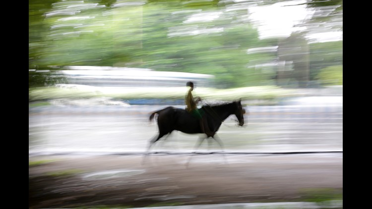 File picture taken with a slow shutter speed shows a boy riding a horse.