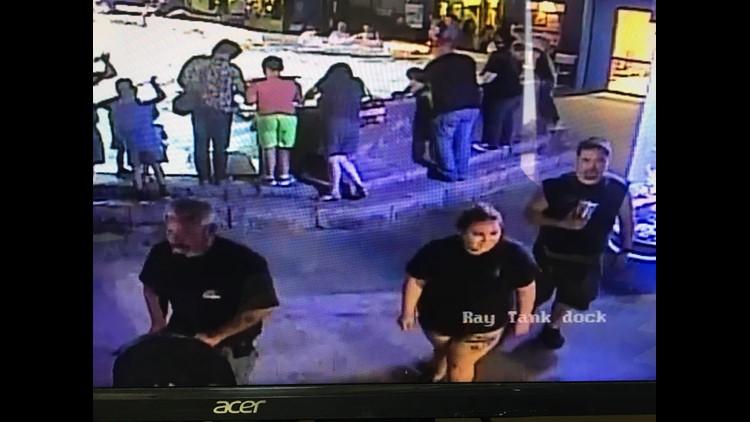 Stolen shark doing well after being returned to San Antonio Aquarium