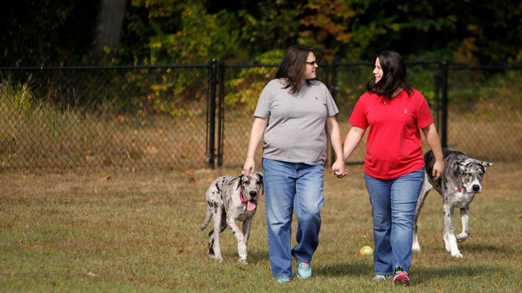 Dana, left, and Kristy Dumont of Dimondale walk with their Grant Danes, Pixie and Penny, in the backyard of their Dimondale home. The Dumonts want to adopt a foster child, but say they were rejected by two state-contracted adoption agencies because they a