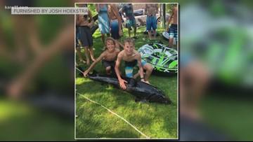 Monster sturgeon found along Minnehaha Creek