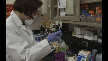 Researcher hopes to develop first early detection test for ovarian cancer