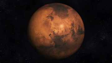 Colonizing Mars means contaminating Mars