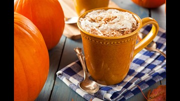 Get ready for fall with all things pumpkin spice