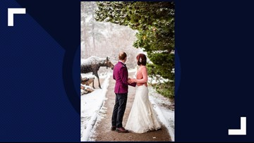 Moose crashes wedding photo shoot at Rocky Mountain National Park