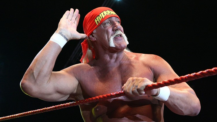 Hogan back in WWE Hall of Fame