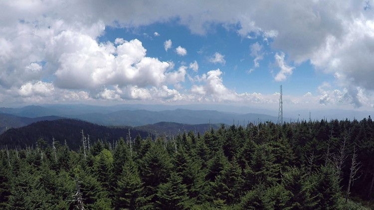 Clingmans Dome radio tower.