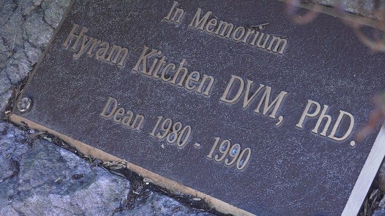 A memorial plaque sits underneath a tree on campus in honor of Dr. Kitchen.