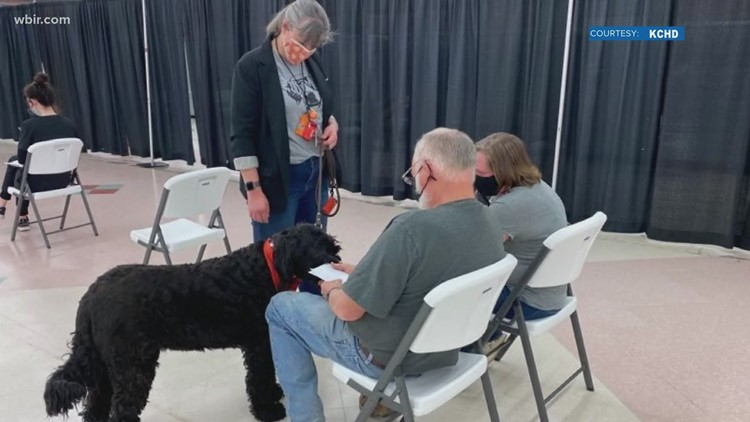 Therapy dogs visits vaccination clinic