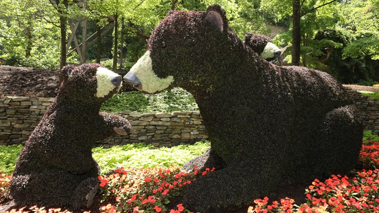 Dollywood's Flower & Food Festival starts today with art, food and entertainment