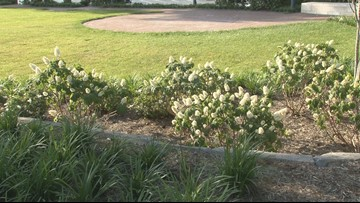 Rain postpones ribbon cutting ceremony for Everly Brothers Park