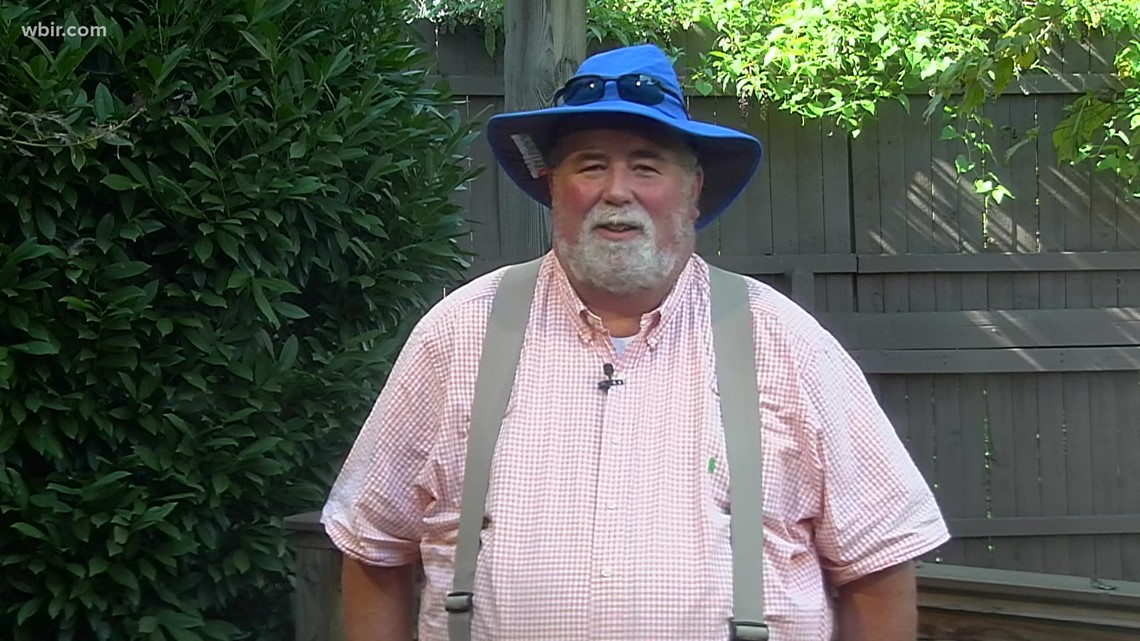 Neal's advice for fall yard care