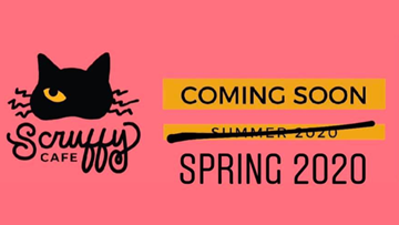 Cat cafe set to open in Knoxville in Spring 2020