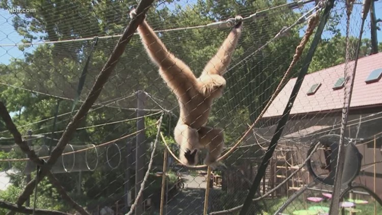 10Listens: Answering your questions about the zoo alcohol bill