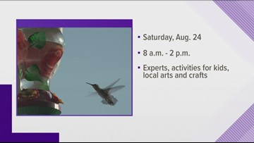 Ijams hosting hummingbird festival Aug. 24
