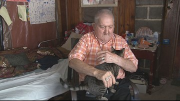Shelter cat saves Claiborne Co. man from venomous snake inside home