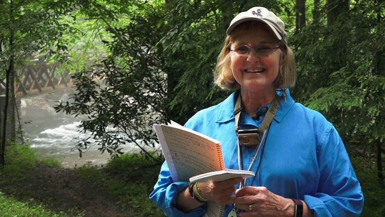Lynn Faust, author of a field guide for fireflies/lightning bugs and glow-worms, discovered the synchronous fireflies in the Great Smoky Mountains at her family's former cabin at Elkmont.