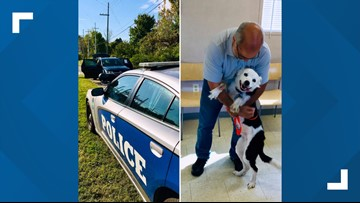 Dog reunited with owner after car theft in West Knoxville