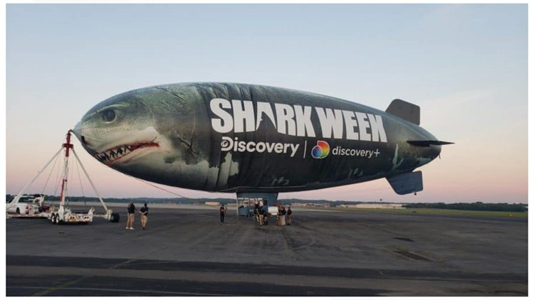 Sky-shark! | Blimp soaring over downtown Knoxville on Thursday for Discovery's Shark Week