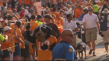 Vols fans find hope in loss to Georgia