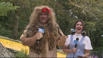 A moment with the cowardly lion