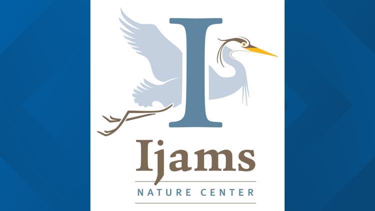 Ijams Nature Center celebrates hummingbirds and nature during festival