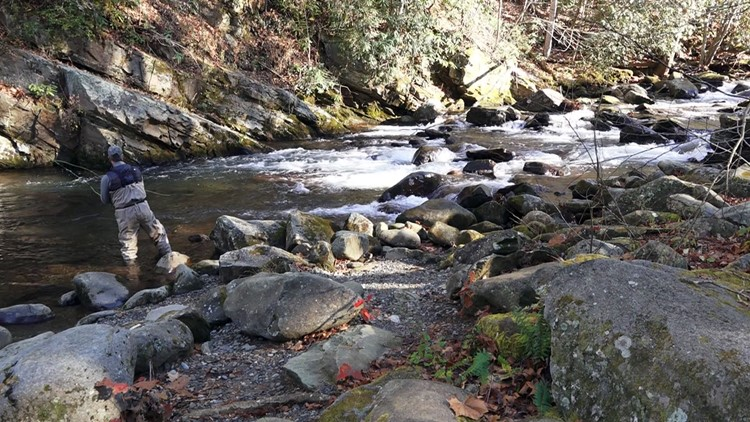 Fly fishing in the Great Smoky Mountains National Park.