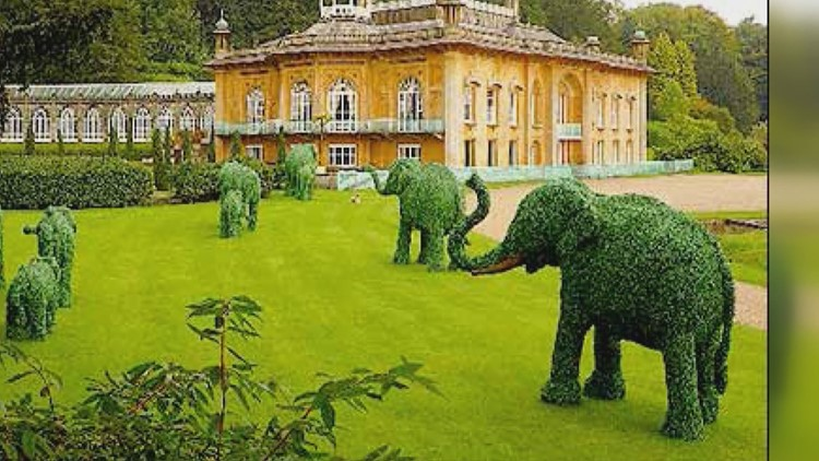 Topiary Joe has made thousands of custom topiary pieces displayed all over the world