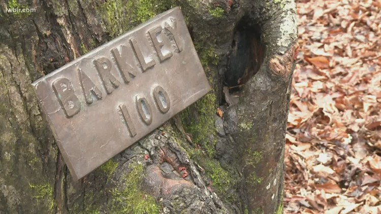 Barkley Fall Classic, one of the most grueling races in the world, kicks off in Morgan County