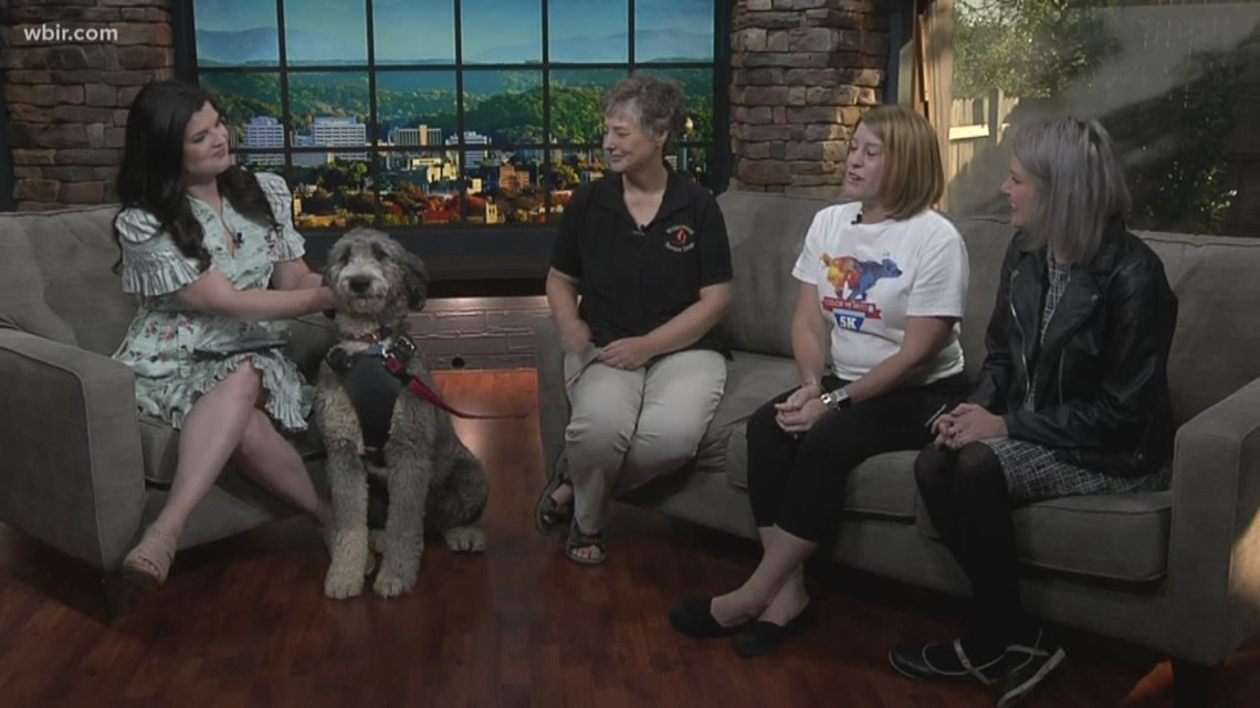 Color Me Mutt 5K Color Run to benefit local charities