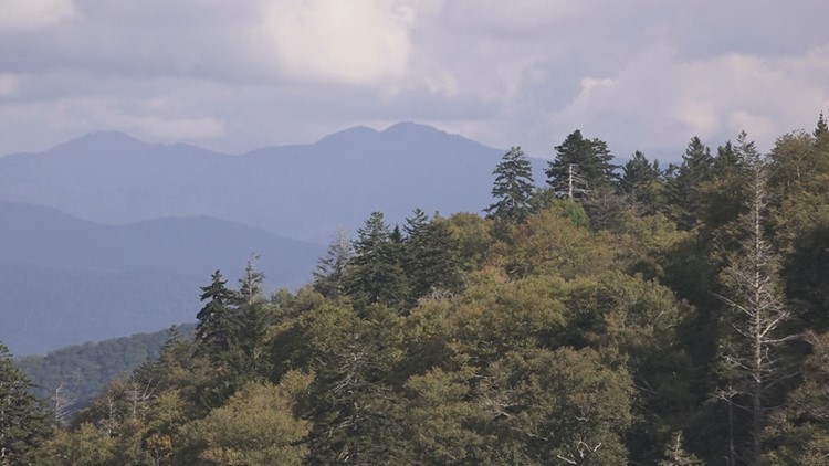 Hometown Spotlight: Great Smoky Mountains