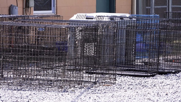 Cages from animal hoarder Cocke County Newport 5