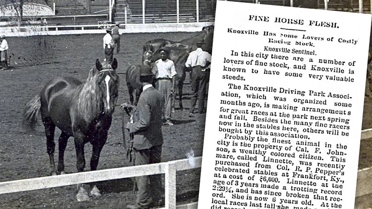 1890 Article Fine Horse Flesh Cal Johnson Knoxville