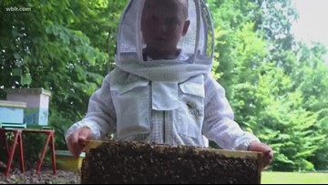 Sweeter Than Honey: Two young brothers are beekeepers