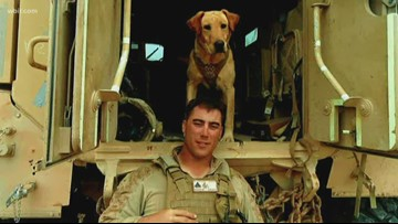Service & Sacrifice: The heroics of a veteran war dog