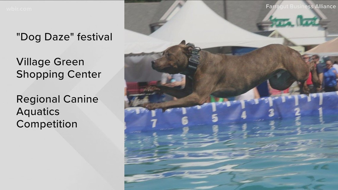 10AboutTown: Pups compete at the