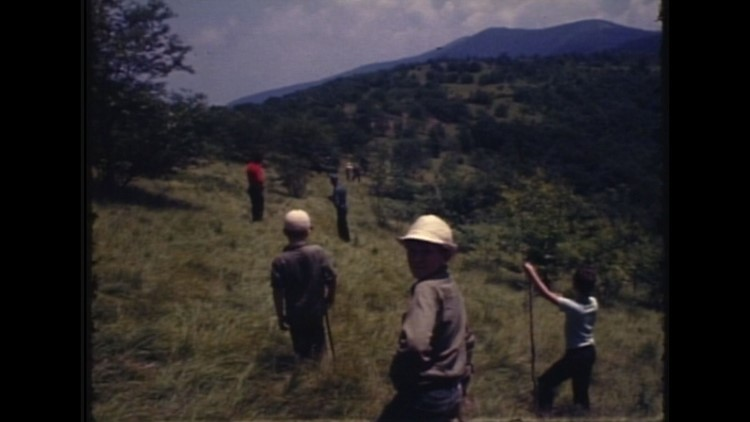 1969 WBIR Archive Film Spence Field during Dennis Martin search