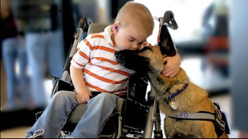 Remembering Juno: A boy, his dog, and their special bond