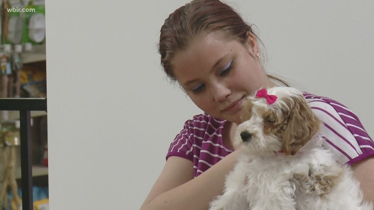 Make-A-Wish gives teen her dream puppy