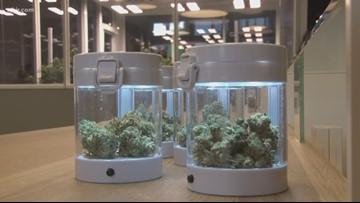 Knoxville hemp processor Blühen Botanicals opens flagship store