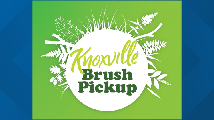 Knoxville brush pickup to begin first week of March