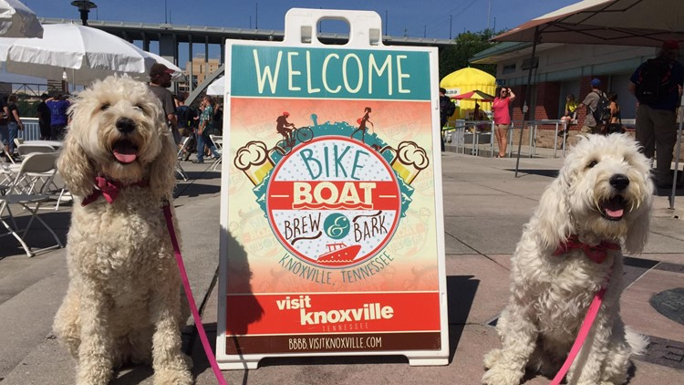 'Bike, Boat, Brew and Bark' provides adventures in downtown Knoxville
