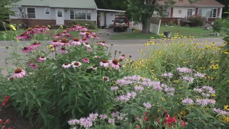 Planning ahead when planting your garden