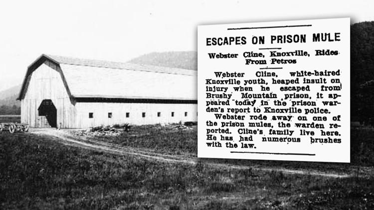 Mule Stolen Brushy 1931 Mountain Prison